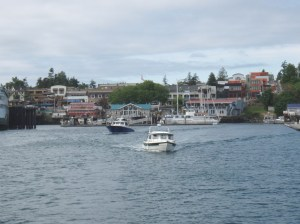 Friday Harbor from the water