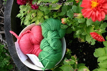 watermelon-malabrigo1
